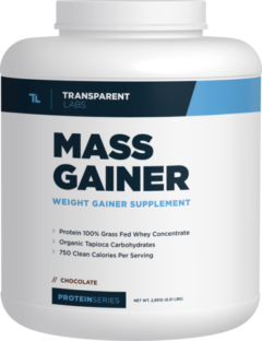 ProteinSeries MASS GAINER supplement